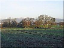 NT0280 : Farmland, Carriden by Richard Webb