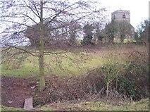 SO6147 : Much Cowarne Church by Bob Embleton