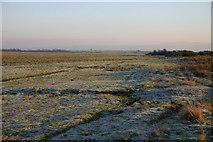 NY1753 : Salt Marsh by Bob Jenkins