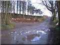 NY0503 : Wider Junction Required for Timber Harvest. by John Holmes