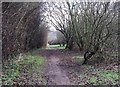 SK5243 : Broxtowe country park by Lynne Kirton