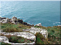 SW4741 : Cliffs at Carn Naun Point by Sheila Russell