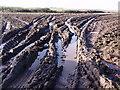 SW3826 : Muddy field gateway by Sheila Russell