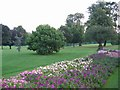 The flower beds are always colourful and well presented in Cheam park.