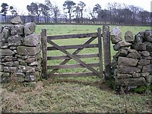 NT0758 : Gate and wall, Colzium by Chris Eilbeck