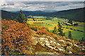 NO3696 : Royal Deeside, east of Ballater by Colin Smith