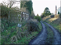 TL5741 : Derelict station platform, Ashdon by David Gruar