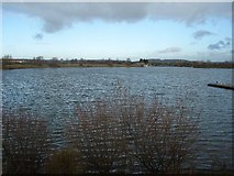 TQ4590 : Fairlop Waters Country Park by John Davies