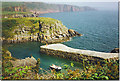 SR9995 : Stackpole Quay and Cliffs. by Colin Smith