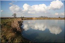 SK9691 : Irrigation Pond by Richard Croft