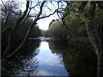 NS5399 : River Forth Near Aberfoyle by Iain Thompson