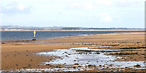 NO4828 : Tay Estuary from Tentsmuir by Ian Cleland