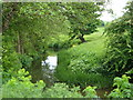 ST6264 : River Chew below Publow by Derek Harper