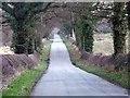 SJ6252 : Ravens Lane by Nigel Williams