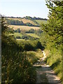 SY7283 : Bridleway near Osmington by Derek Harper