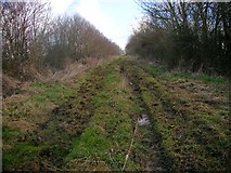 TL0175 : Bridleway from Keyston to Denford by Will Lovell