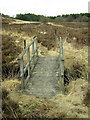 NS7972 : Footbridge in Palacerigg Country Park by Iain Thompson