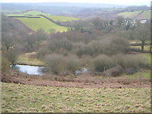 SX8381 : Pond near Teign Village by Derek Harper