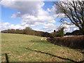 SU8899 : Farmland beside Nag's Head Lane by Andrew Smith