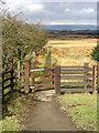 NS7869 : Footpath Near Greengairs Landfill Site by Iain Thompson