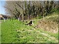 TQ4977 : The Bedon Stream, Lessness Heath, Belvedere, Kent by Dr Neil Clifton