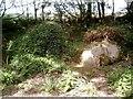 SW9946 : Mudmaid at Lost Gardens of Heligan by Jane Osborne