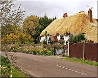 SZ9098 : Old Manor Cottage, Aldwick by Richard Thomas
