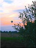 TM0799 : Balloon drifting into the sunset by Lyn Harper