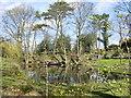 SJ5368 : Mill Pond, Waste Lane, Kelsall by Sue Adair