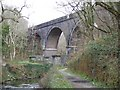 SX5259 : Cann Viaduct and river Plym by David Smith