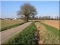 TF2938 : Hill Lane, Kirton, Lincs by Rodney Burton