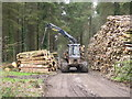 SN0013 : Logging in Moorlands Wood by John Winterbottom
