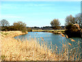 TL1398 : River Nene at Ferry Meadows by Terry McKenna