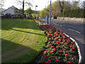 NS7578 : Flowerbed at Kelvinhead by Chris Upson