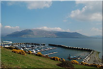 J1812 : Carlingford marina by Albert Bridge
