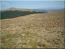 NS6680 : Hillside west of Birkenburn reservoir by Chris Wimbush