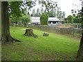 TL0717 : Slip End: Woodside Animal Farm & Leisure Park by Nigel Cox