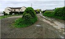 NZ6020 : Thrushwood Farm by Mick Garratt