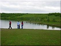 NZ3453 : Pond in Herrington Country Park by Brian Abbott