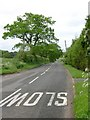 SJ5666 : Fishpool Road near Utkinton (Tarporley, Cheshire) by Andrew Loughran