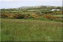 SW6637 : Chycarn Moor by Tony Atkin