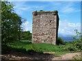 NS2154 : Fairlie Glen, ruins of Fairlie Castle by william craig