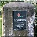 SJ5871 : Gatepost, Delamere Park by Jo Lxix