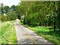 SE8930 : Newfield Lane by Roger Gilbertson
