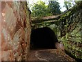 SJ4874 : The Tunnel, Mountskill Quarry by Mike Harris
