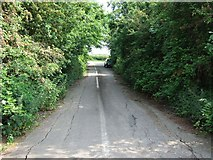 SP9523 : Disused road near Stanbridge by Rob Farrow
