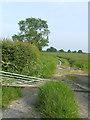 SJ6142 : Broken gate by Nigel Williams