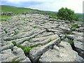 SD8964 : Limestone pavement on Malham Cove by Martyn Gorman