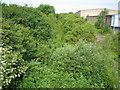 TL0622 : Luton: Disused railway by Nigel Cox