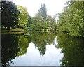 SJ5874 : Acton Mill Pool 2 by Jo Lxix